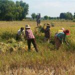 Cambodia CSA-GLEE field trip 2016
